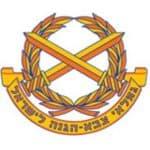 צוות לוגו